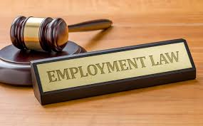 BUSM4591 Employment Law Assignment