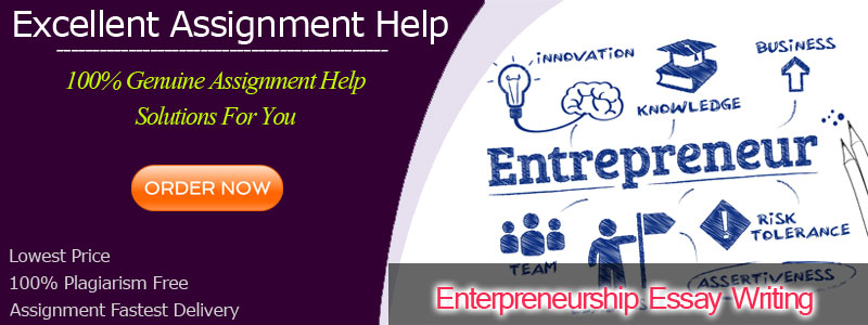 Entrepreneurship Essay Writing