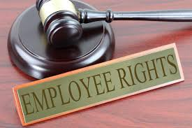 HRM4011 Employment And Human Rights Law Assignment-George Brown College Canada.