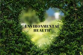 PUBH7027/7287 Introduction To Environmental Health Assignment-Queensland University Australia.