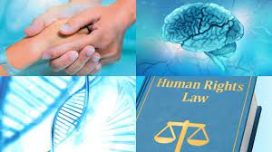 LLB140 Human Rights Law Assignment-Australia.