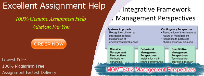 MGMT6012 Management Perspectives
