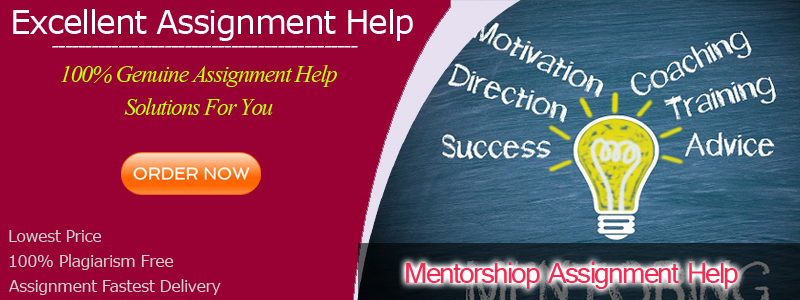 Mentorship Assignment Help