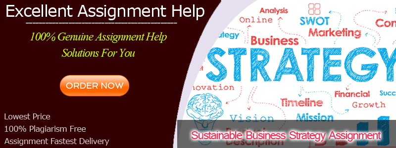 Sustainable Business Strategy Assignment
